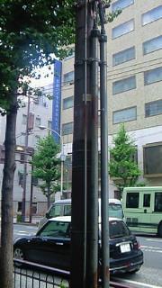 NEC_0321.jpg